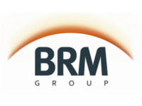 BRM Capital Fund L.P.